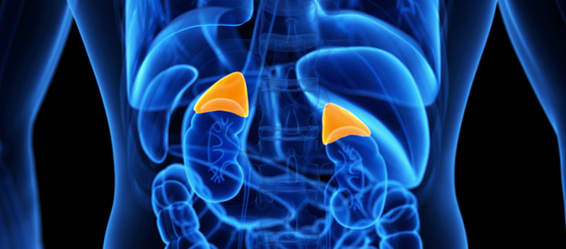 Azedra Approved to Treat Rare Tumors of the Adrenal Gland