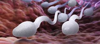 Patients should be advised that fertility may be impaired with the use of Cytovene-IV.