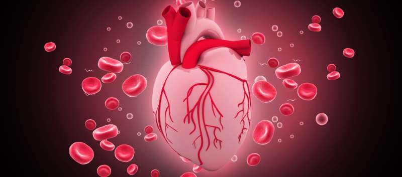 Ticagrelor + Aspirin Beneficial After Elective CABG