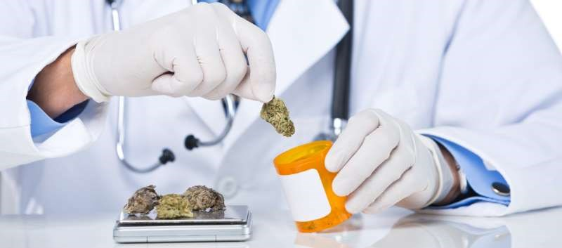 Experts Offer Tips on Integrating Medical Marijuana Into Geriatric Practice