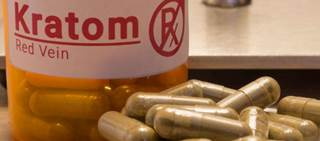 Kratom is an herbal supplement that shares structural similarities with opioid analgesics