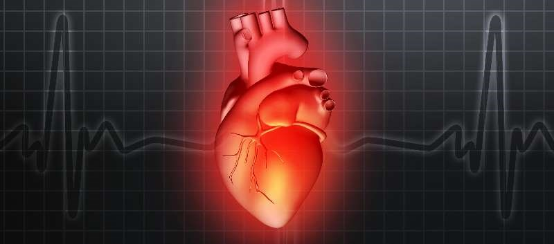 Misconceptions About Heart Disease Widespread in the United States