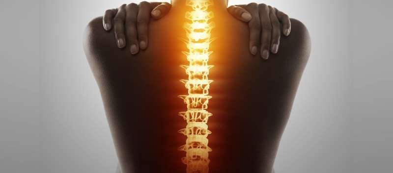 TM is a debilitating autoimmune disease that destroys parts of the spinal cord