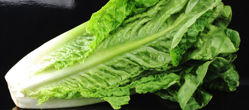 Romaine lettuce sold in stores to carry labels with region where produce was grown, harvest date.